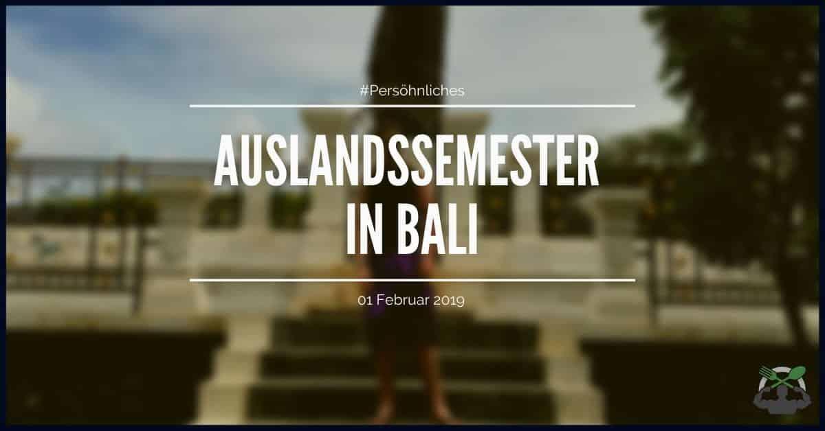 Mein Auslandssemester in Bali